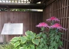 nagareyama1110